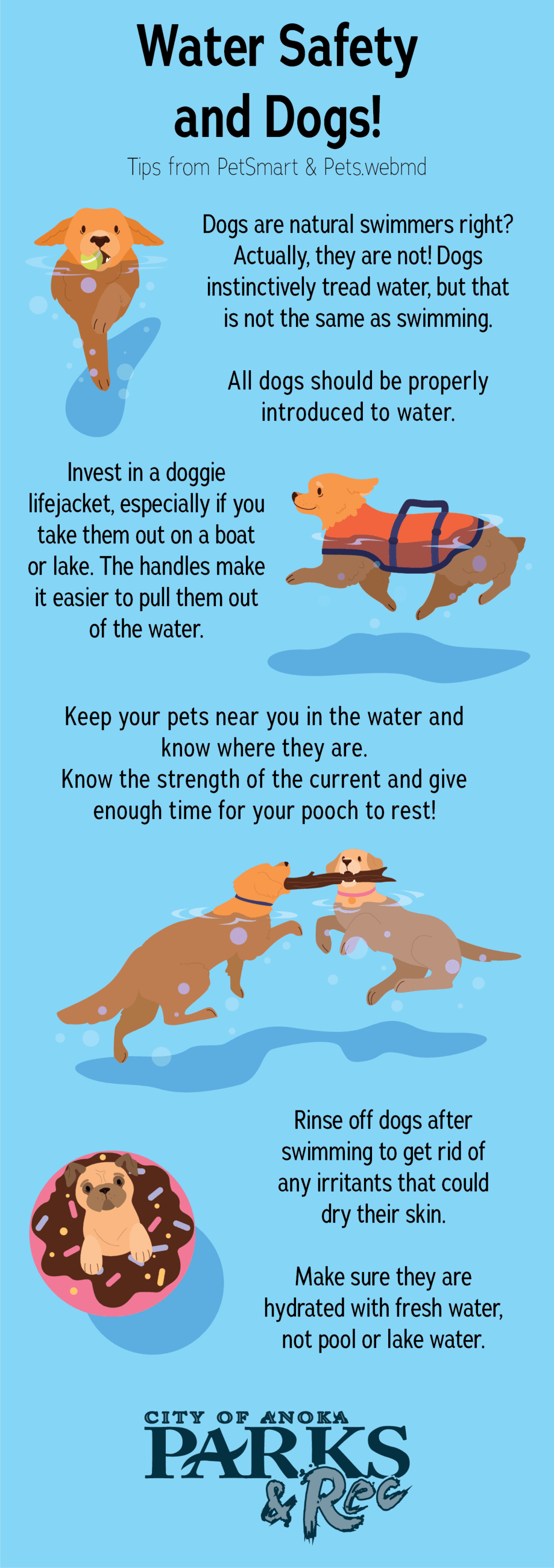 List of water safety tips for dogs from PetSmart and pets.webmd